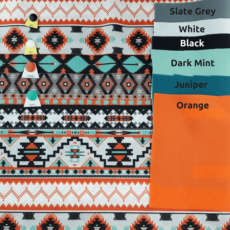 Mint and Orange Aztec pattern